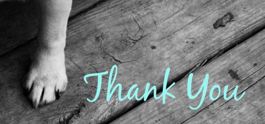 ThankYouLetterToDog