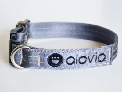 used seatbelt dog collar front alovia