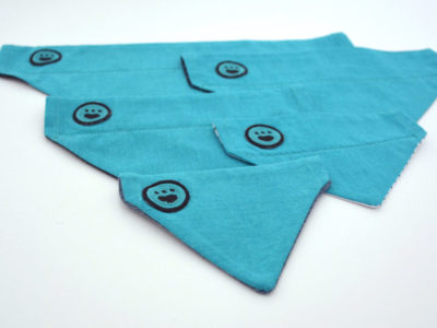 Cat and Dog Bandanas